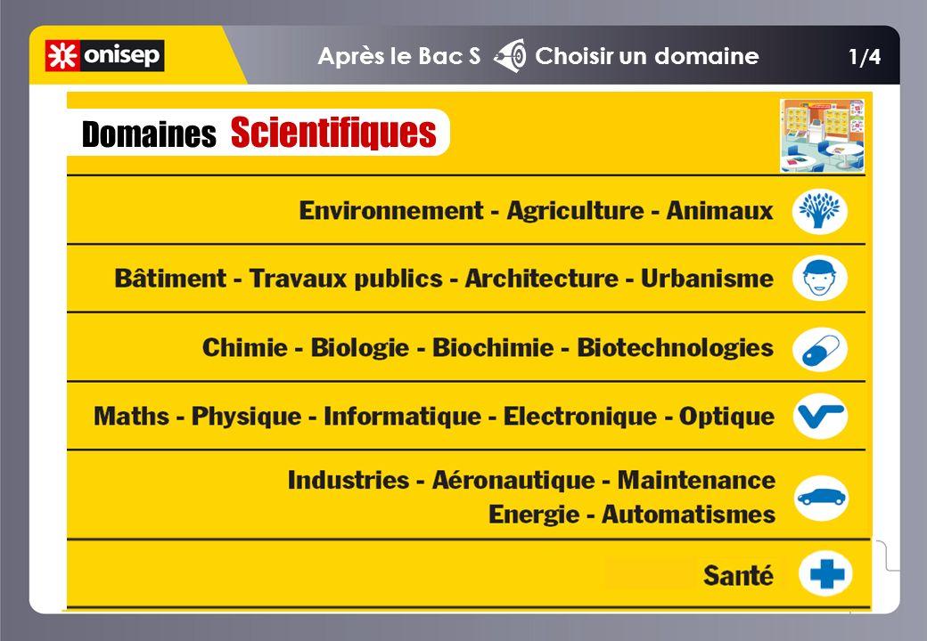 Domaines Scientifiques 1/4 Après le Bac S Choisir un domaine
