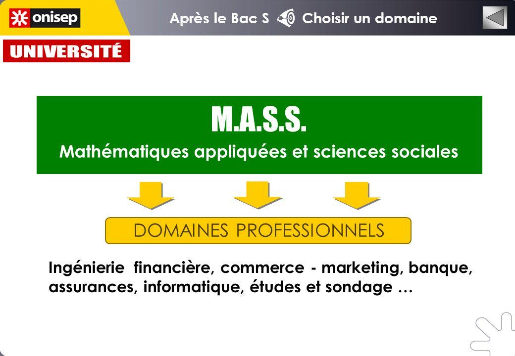DOMAINES PROFESSIONNELS Ingénierie financière, commerce - marketing, banque, assurances, informatique, études et sondage … M.A.S.S.