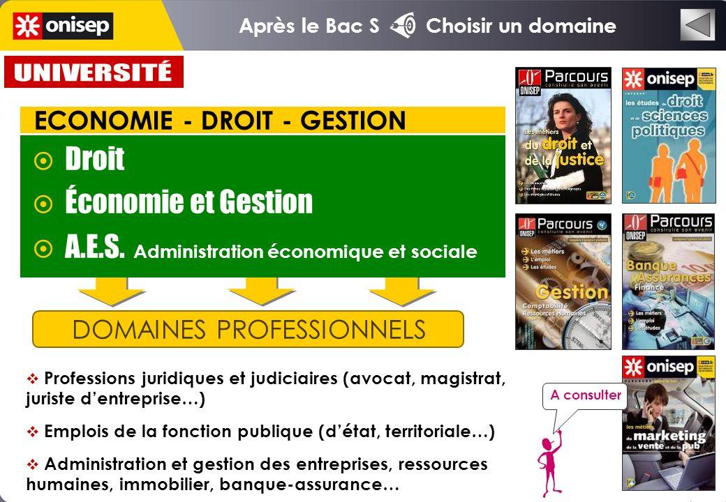 Après le Bac S Choisir un domaine DOMAINES PROFESSIONNELS Droit Économie et Gestion A.E.S.