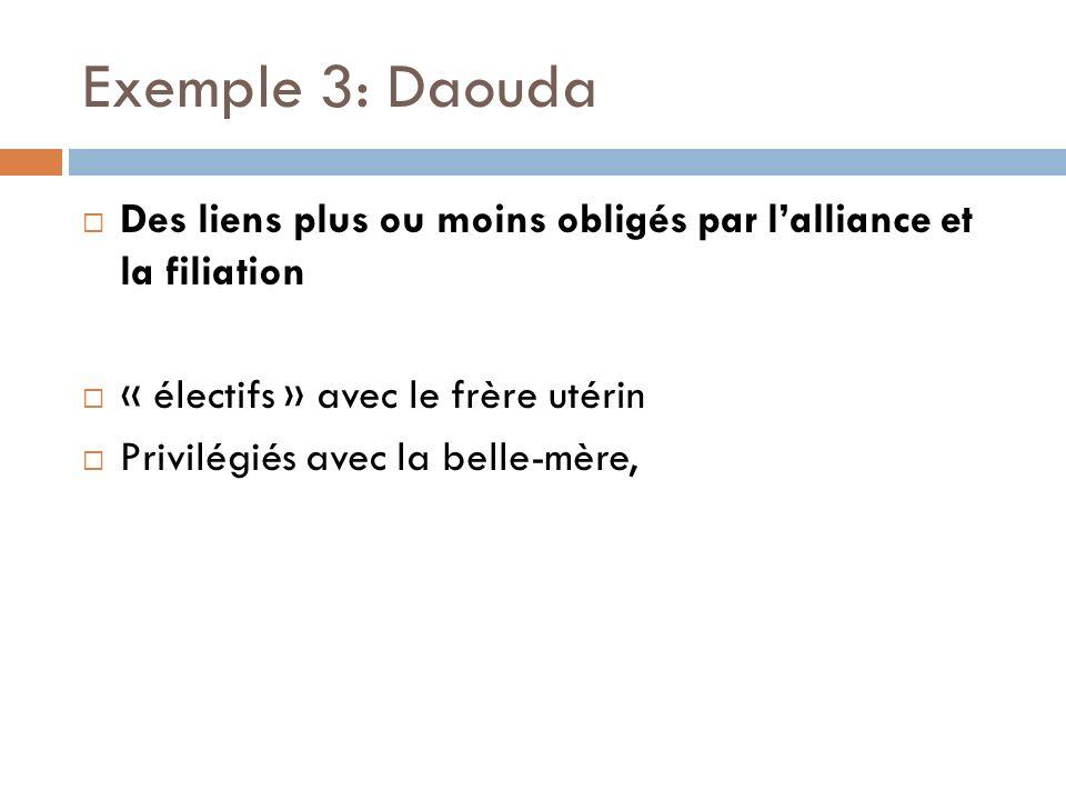 Exemple 3: Daouda Des liens plus ou moins obligés par lalliance et la filiation « électifs » avec le frère utérin Privilégiés avec la belle-mère,
