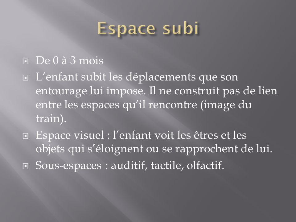 Espace sensori-moteur : espace de laction et du mouvement.