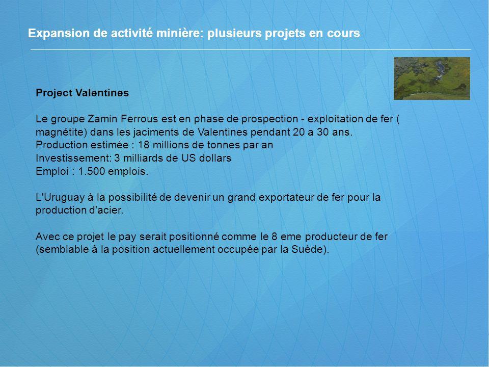 Project Valentines Le groupe Zamin Ferrous est en phase de prospection - exploitation de fer ( magnétite) dans les jaciments de Valentines pendant 20