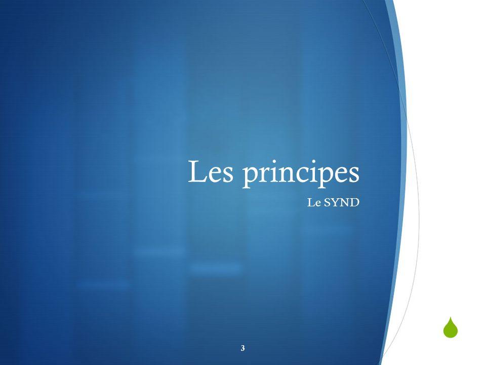 Les principes Le SYND 3