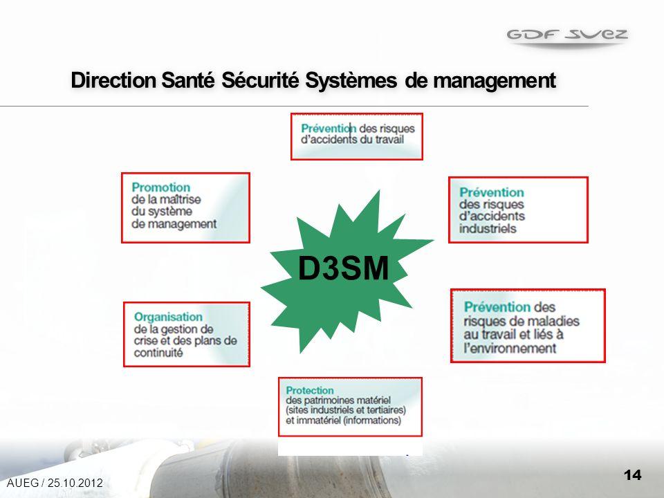 14 Direction Santé Sécurité Systèmes de management D3SM AUEG / 25.10.2012