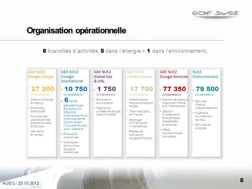 5 Organisation opérationnelle 6 branches dactivités, 5 dans lénergie + 1 dans lenvironnement.