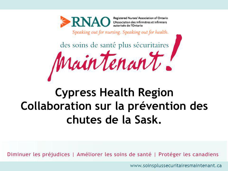 www.soinsplussecuritairesmaintenant.ca Cypress Health Region Coin sud-ouest de la Saskatchewan Population de 43 000 personnes Superficie de 44 000 km 2 1 hôpital régional (80 lits) 4 hôpitaux ruraux 484 lits dans 12 établissements de soins de longue durée