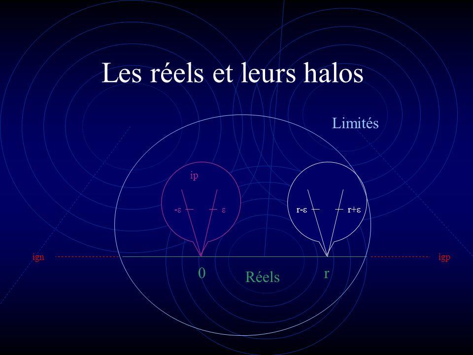 Les réels et leurs halos r-εr+ε r0 -ε-εε ignigp Limités Réels ip