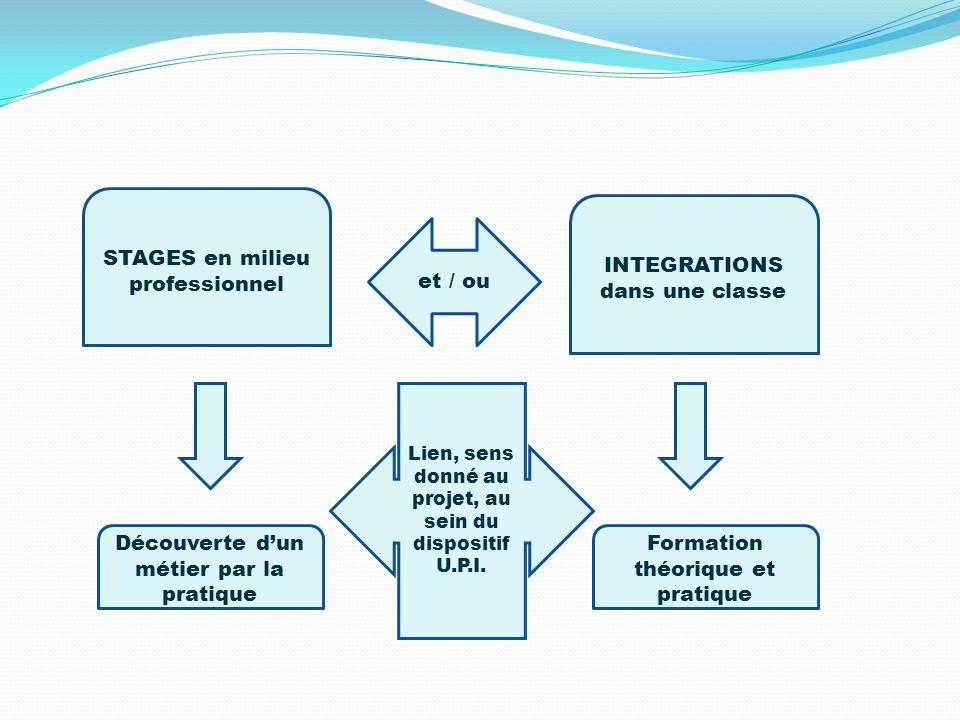 STAGES en milieu professionnel INTEGRATIONS dans une classe et / ou Découverte dun métier par la pratique Formation théorique et pratique Lien, sens d