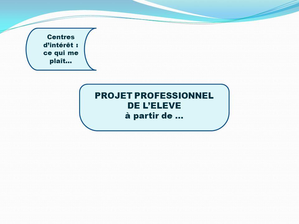 PROJET PROFESSIONNEL DE LELEVE à partir de … Centres dintérêt : ce qui me plaît…