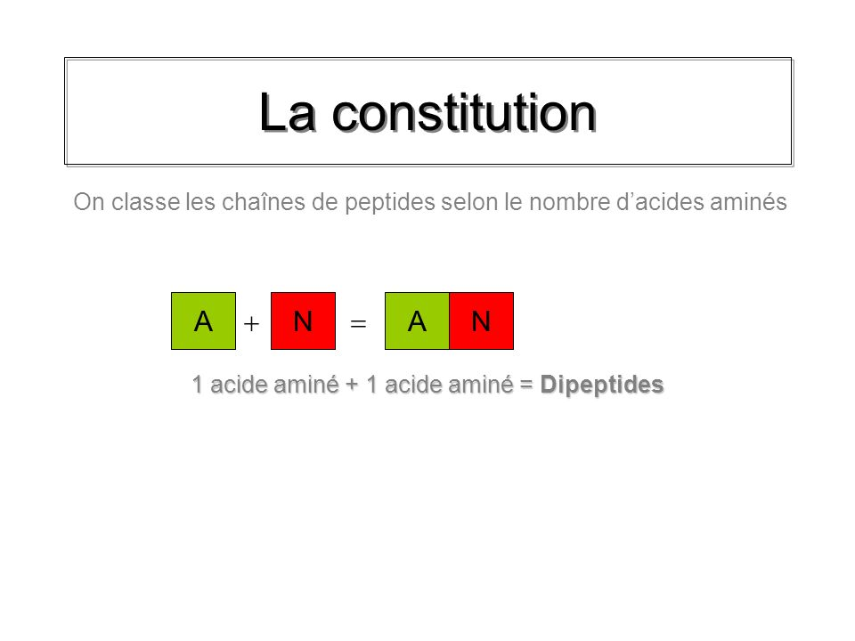 La constitution 1 acide aminé + 1 acide aminé = Dipeptides AN On classe les chaînes de peptides selon le nombre dacides aminés AN