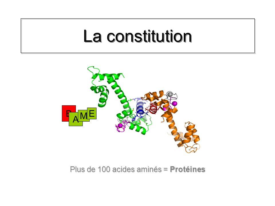 La constitution Dans les protéines, 100 à 220000 acides aminés se lient.