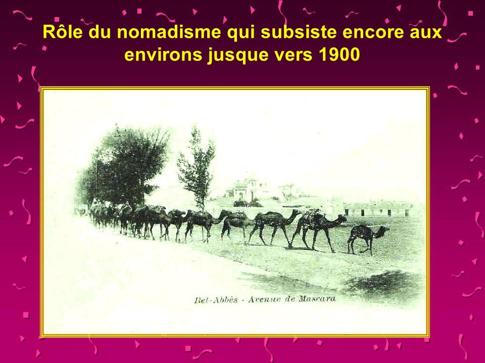 Ce campement de nomades proche photographié par lauteur à Sidi-Yacoub en 1954, donne une idée de ce que devait être en partie la plaine désertique de Sidi Bel Abbès en 1835.