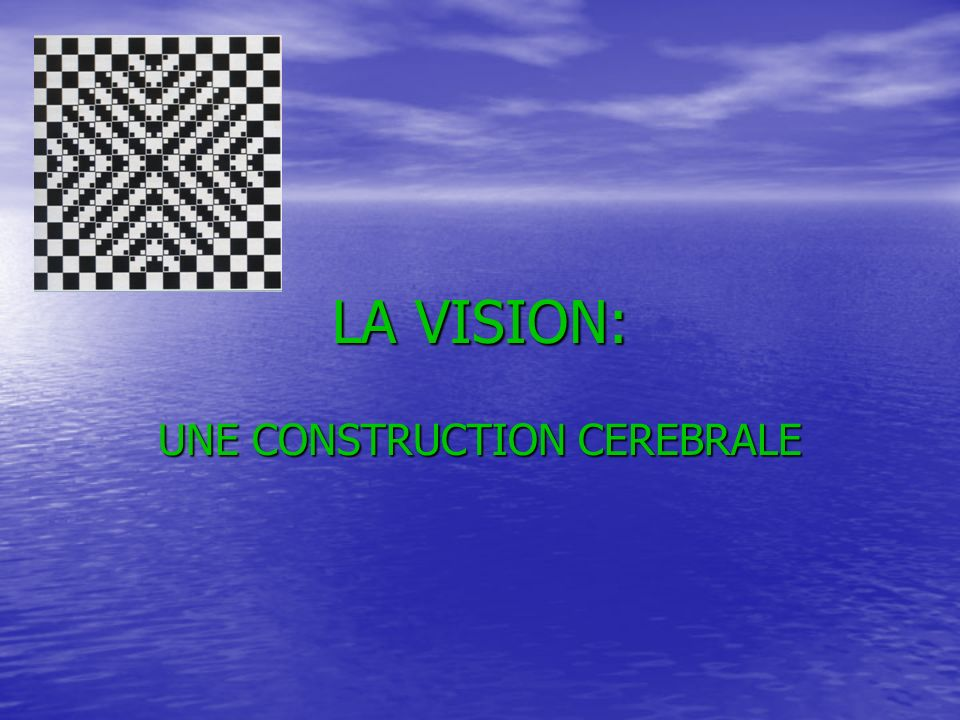LA VISION: UNE CONSTRUCTION CEREBRALE