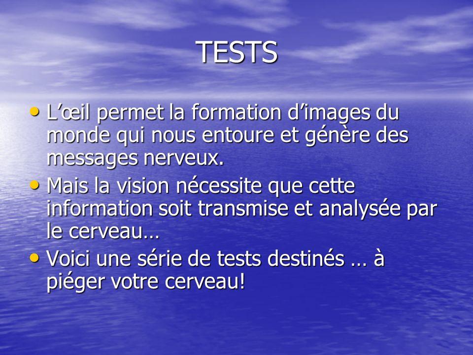 TESTS Lœil permet la formation dimages du monde qui nous entoure et génère des messages nerveux.