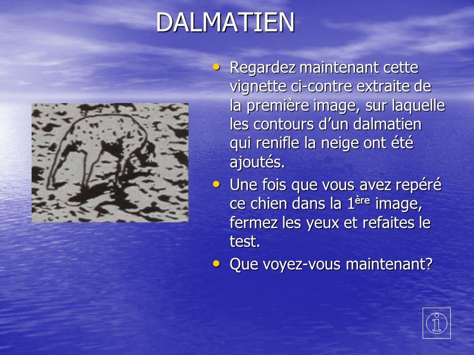 DALMATIEN Regardez maintenant cette vignette ci-contre extraite de la première image, sur laquelle les contours dun dalmatien qui renifle la neige ont été ajoutés.