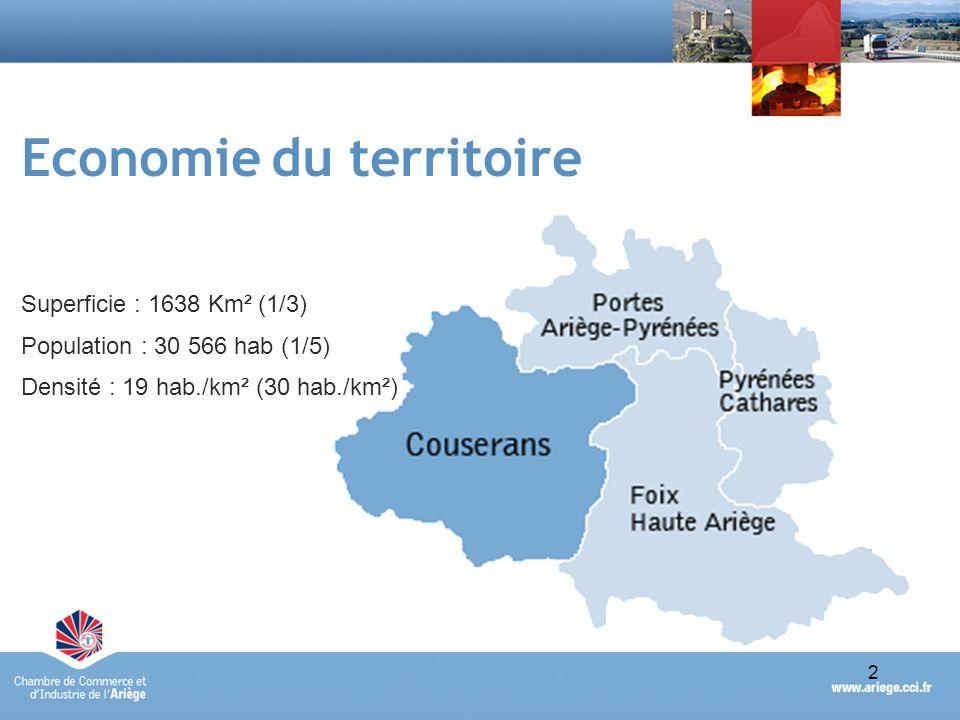 3Portrait économique synthétique du Pays du Couserans - avril 2010 Un tissu économique peu dense Territoires Nbre étsPoidsEffectifsPoids Pays Couserans108321 %3 28616 % Ariège5 154100 %21 178100 % Source : fichier RCS de la CCI de lAriège – établissements actifs au 31/12/2009 5154 établissements et 21 178 salariés en Ariège (données RCS) Pays Couserans : 21% des établissements ariégeois (1083) et 16% des effectifs de lAriège (3 286) un poids économique comparativement réduit