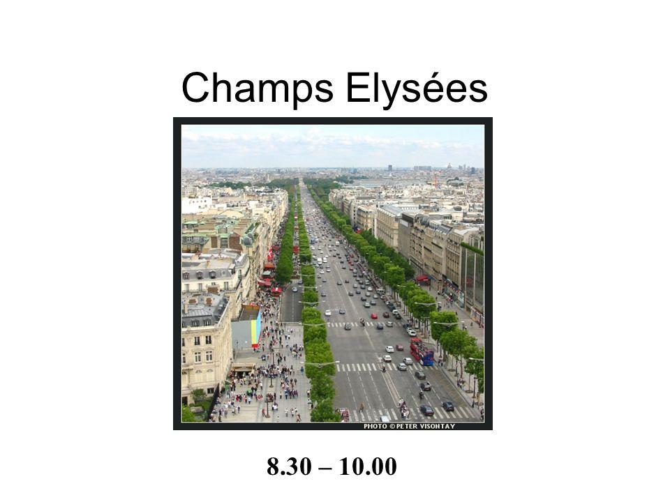 - 12 rues se rencontrent là - 50 mètres de haut - 45 mètres de large - dessins de Napoléon sont gravés - il se trouve sur la Place Charles de Gaulle