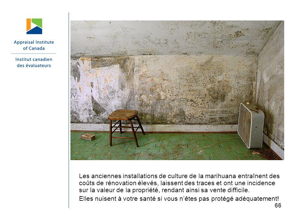 66 Les anciennes installations de culture de la marihuana entraînent des coûts de rénovation élevés, laissent des traces et ont une incidence sur la v
