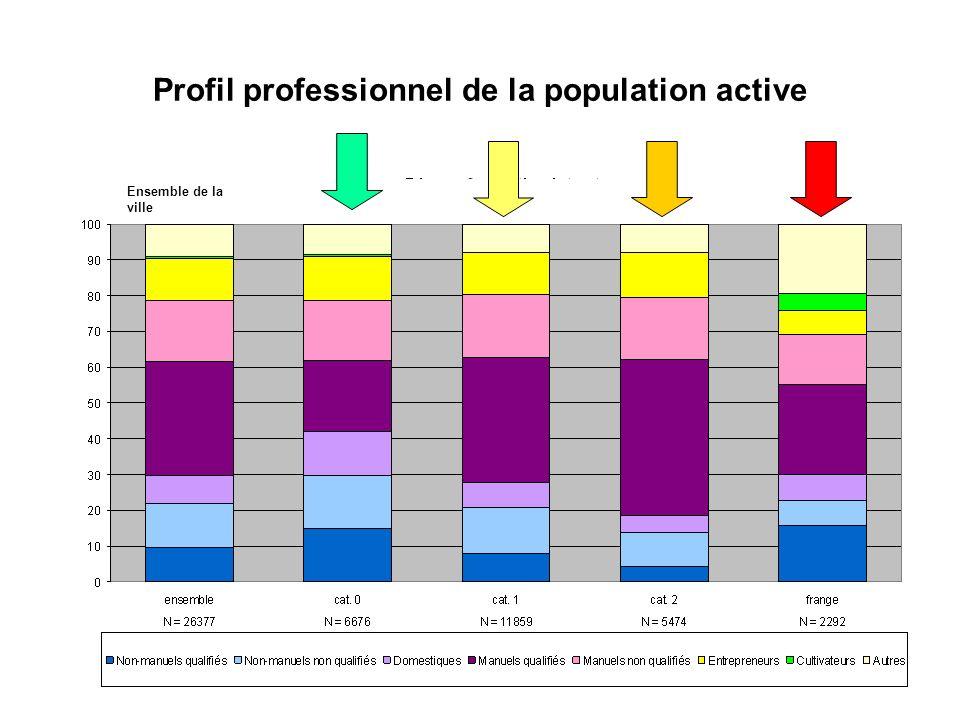Typologie socio-spatiale de la nouvelle frange par rapport à son voisinage Comparaison grâce au profil professionnel de la population active et aux indicateurs socio-démographiques