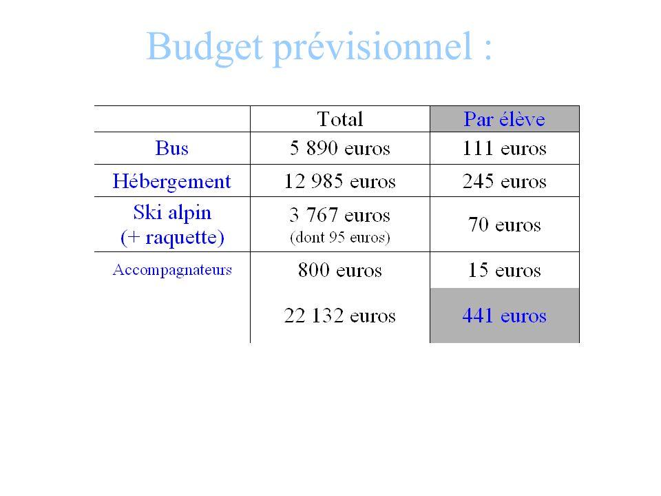 Budget prévisionnel :