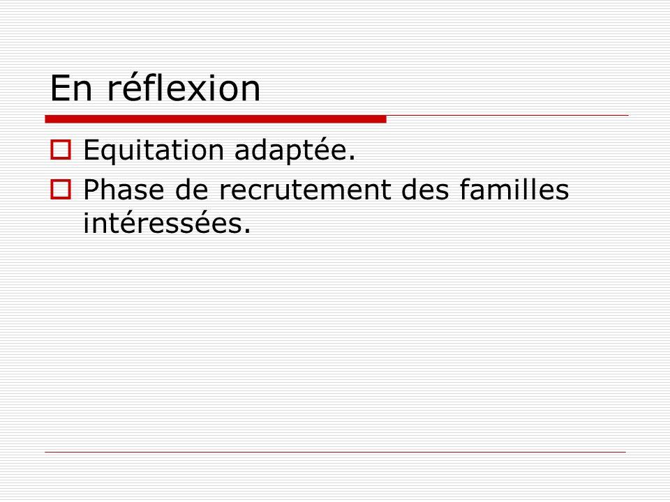 En réflexion Equitation adaptée. Phase de recrutement des familles intéressées.