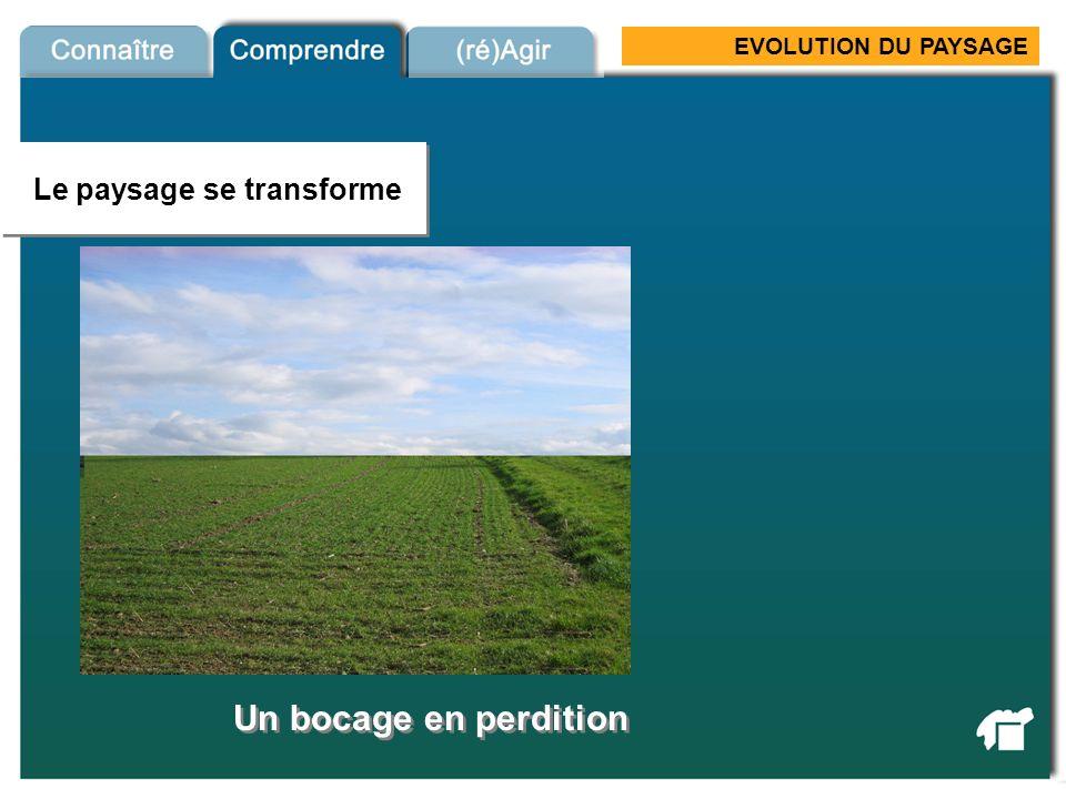 EVOLUTION DU PAYSAGE Evolution village … au gré des opportunités foncières Source : CAUE 79 Les villes et villages évoluent