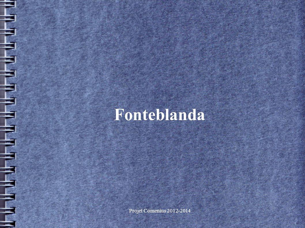 Projet Comenius 2012-2014 Fonteblanda