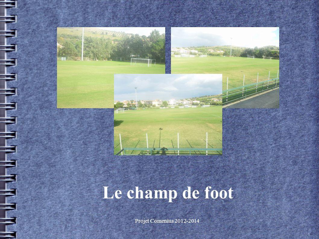 Projet Comenius 2012-2014 Le champ de foot