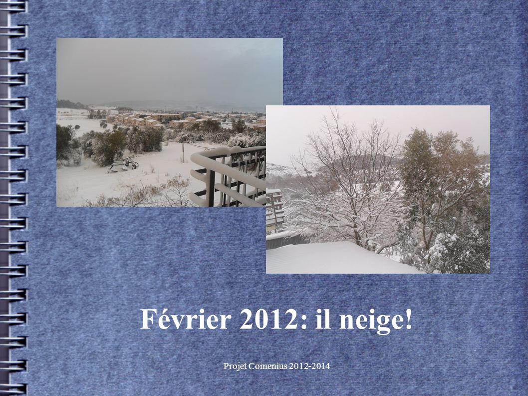 Projet Comenius 2012-2014 Février 2012: il neige!