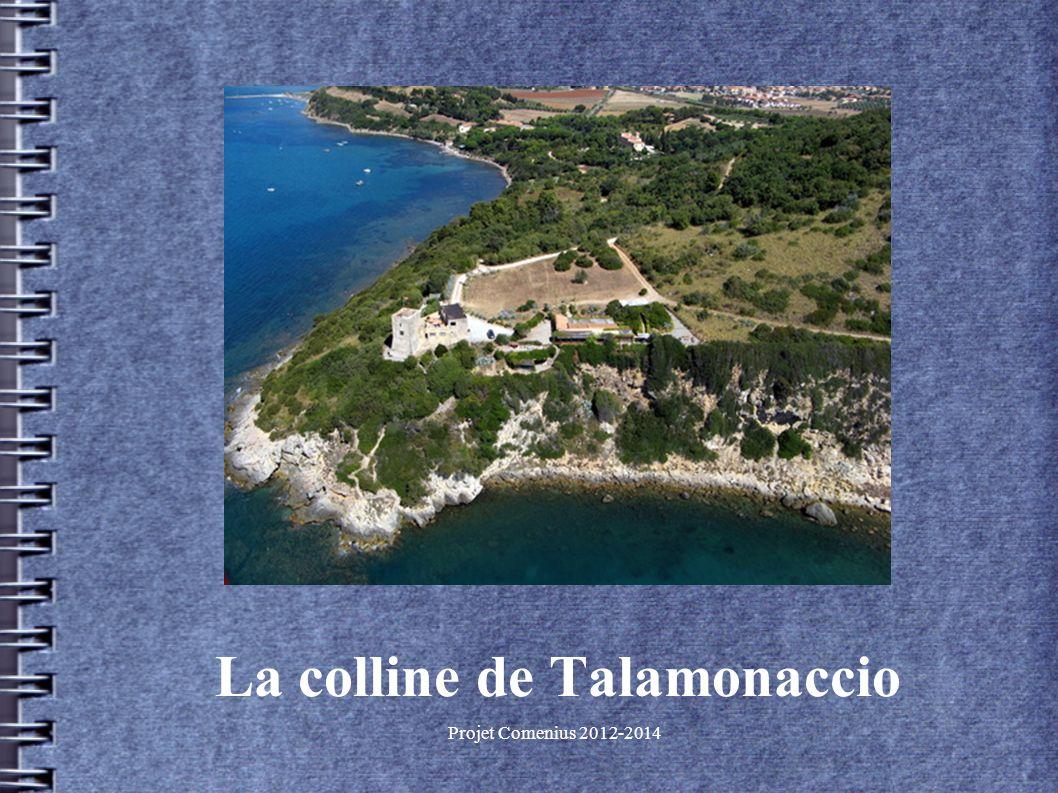 Projet Comenius 2012-2014 La colline de Talamonaccio