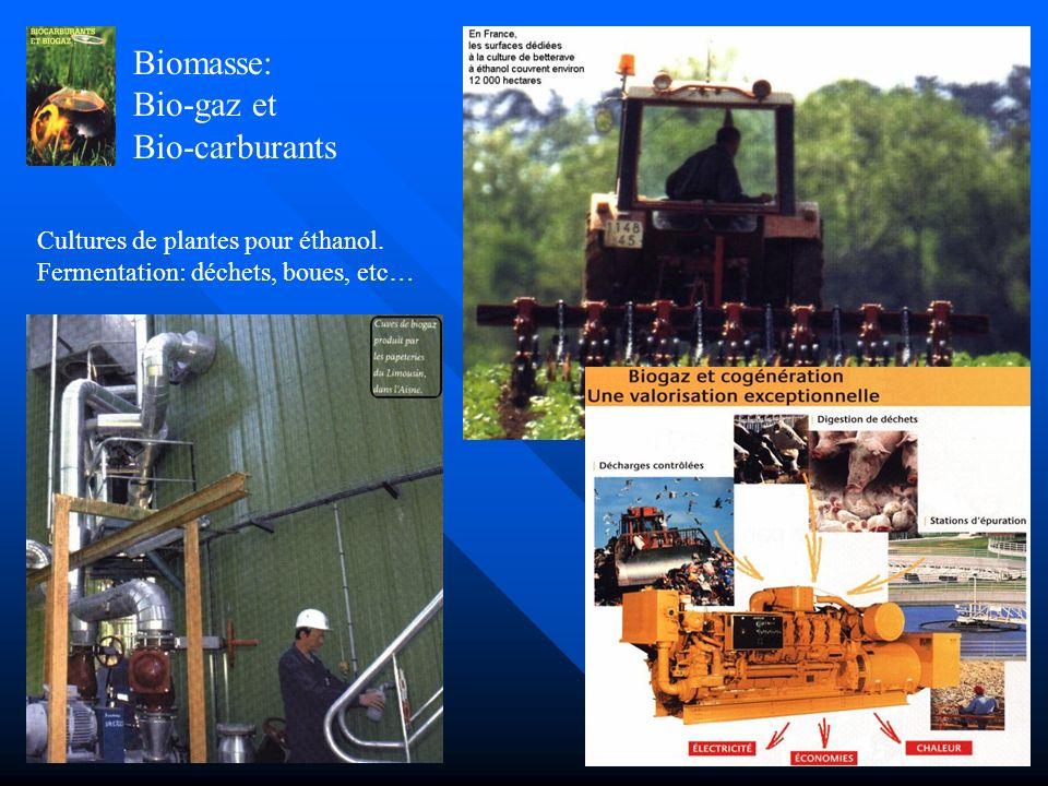 Géothermie: chauffage individuel Chauffage et eau chaude sanitaire par récupération des calories dans le sol et transfert par pompe à chaleur vers un