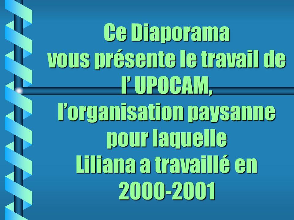Ce Diaporama vous présente le travail de l UPOCAM, lorganisation paysanne pour laquelle Liliana a travaillé en 2000-2001