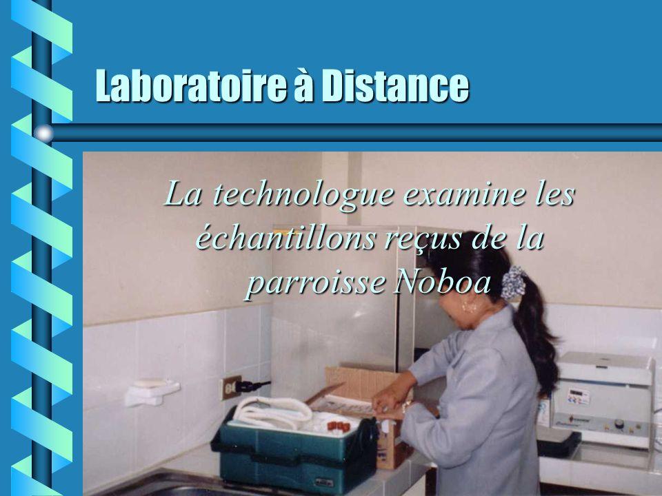 Laboratoire à distance Le Chauffeur du bus local livre le Frigobox contenant les échantillons à analyser à la technologue