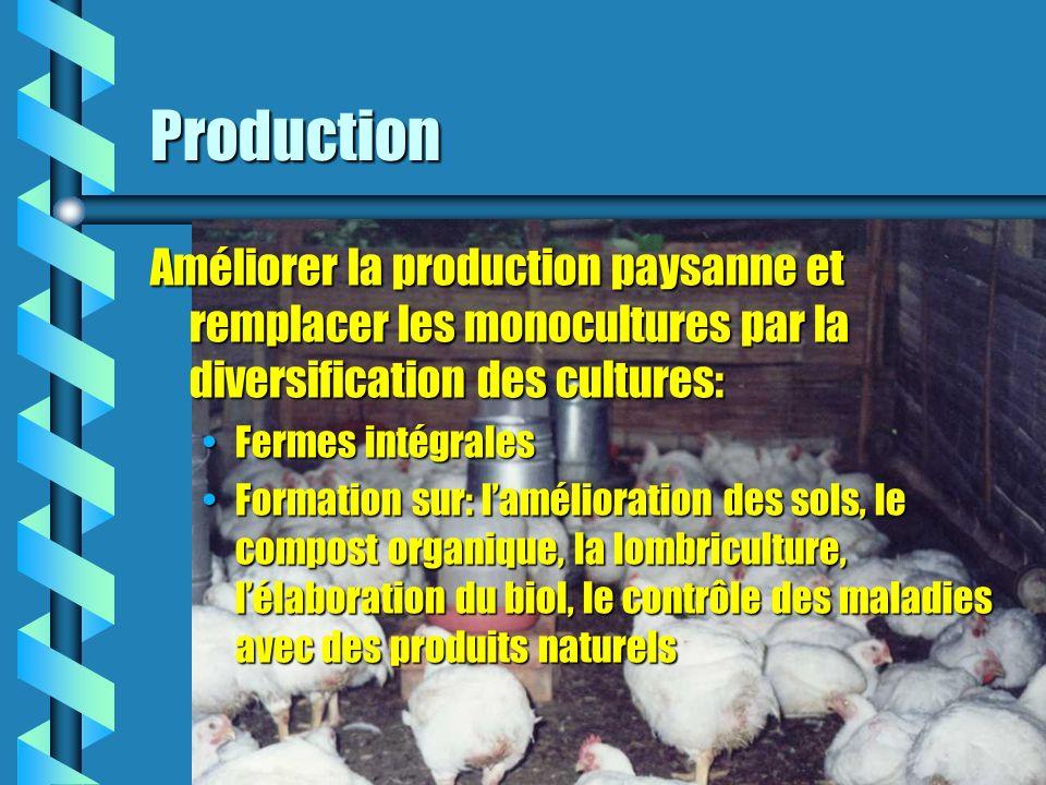 Production Améliorer la production paysanne et remplacer les monocultures par la diversification des cultures: Fermes intégralesFermes intégrales Formation sur: lamélioration des sols, le compost organique, la lombriculture, lélaboration du biol, le contrôle des maladies avec des produits naturelsFormation sur: lamélioration des sols, le compost organique, la lombriculture, lélaboration du biol, le contrôle des maladies avec des produits naturels