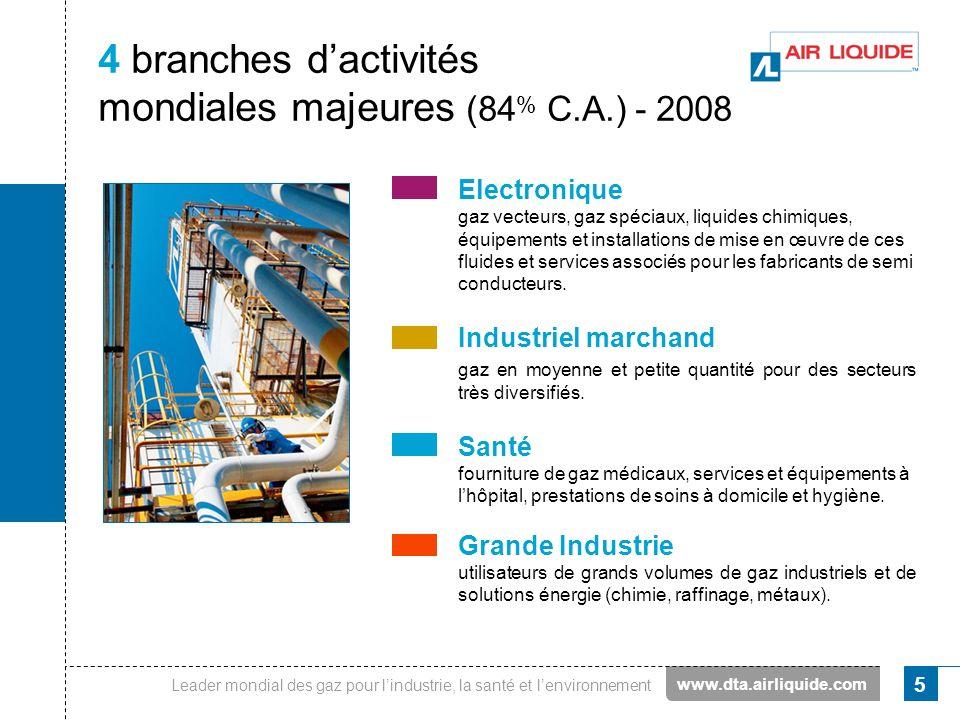 Leader mondial des gaz pour lindustrie, la santé et lenvironnement 5 4 branches dactivités mondiales majeures (84 % C.A.) - 2008 Electronique gaz vect