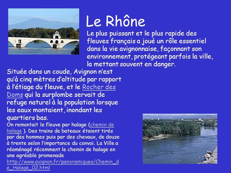 Le Rhône Le plus puissant et le plus rapide des fleuves français a joué un rôle essentiel dans la vie avignonnaise, façonnant son environnement, protégeant parfois la ville, la mettant souvent en danger.