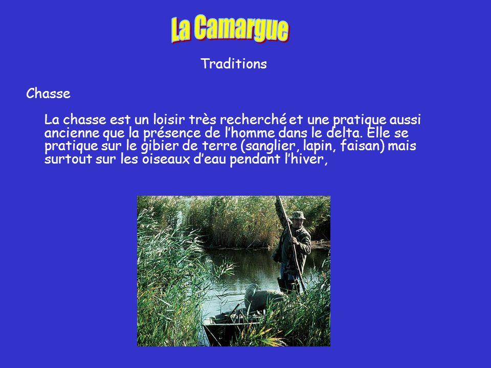 Traditions Chasse La chasse est un loisir très recherché et une pratique aussi ancienne que la présence de lhomme dans le delta.