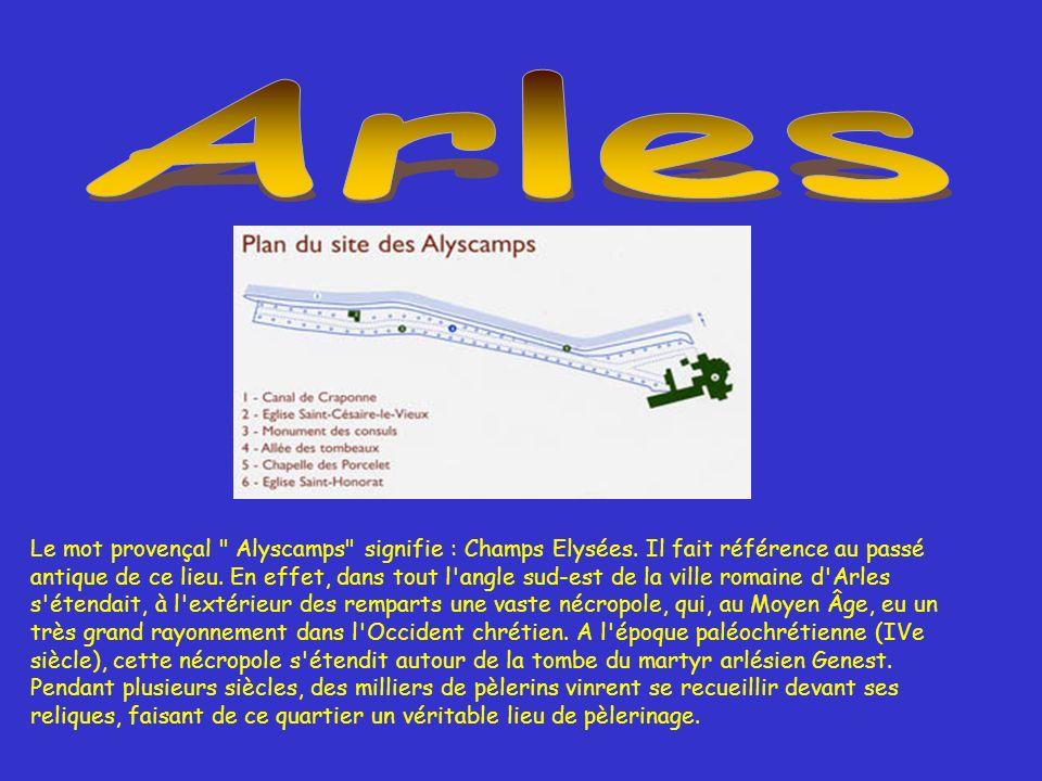 Le mot provençal Alyscamps signifie : Champs Elysées.
