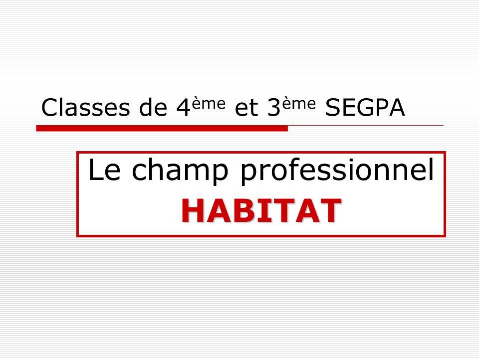 Classes de 4 ème et 3 ème SEGPA Le champ professionnelHABITAT