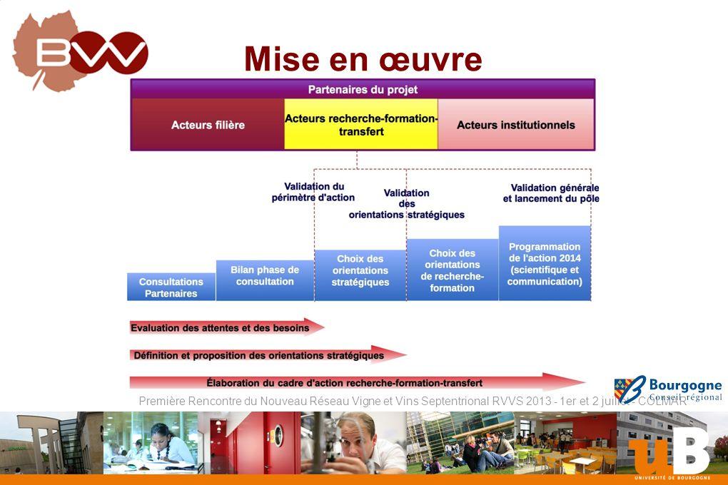 Nom de la composante Première Rencontre du Nouveau Réseau Vigne et Vins Septentrional RVVS 2013 - 1er et 2 juillet - COLMAR Mise en œuvre