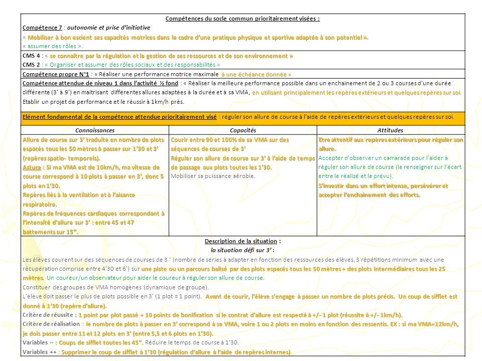 Compétences du socle commun prioritairement visées : Compétence 7 : autonomie et prise dinitiative Mobiliser à bon escient ses capacités motrices dans