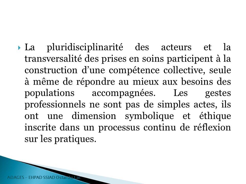 La pluridisciplinarité des acteurs et la transversalité des prises en soins participent à la construction dune compétence collective, seule à même de