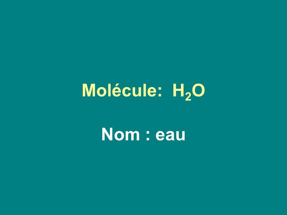 Molécule: H 2 O Nom : eau