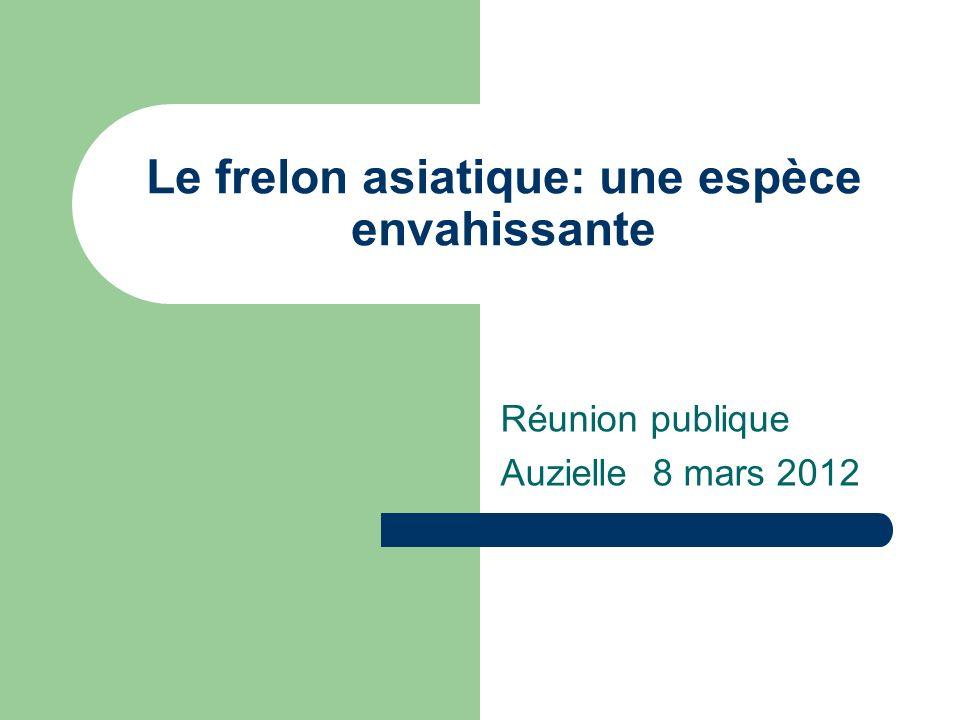 Le frelon asiatique: une espèce envahissante Réunion publique Auzielle 8 mars 2012