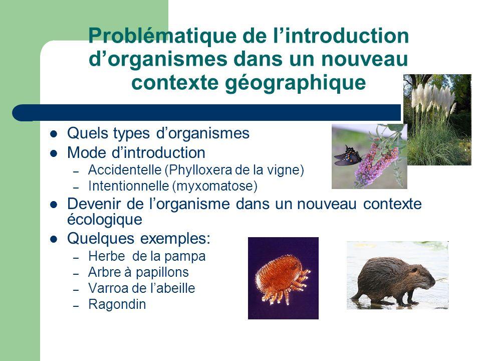Problématique de lintroduction dorganismes dans un nouveau contexte géographique Quels types dorganismes Mode dintroduction – Accidentelle (Phylloxera