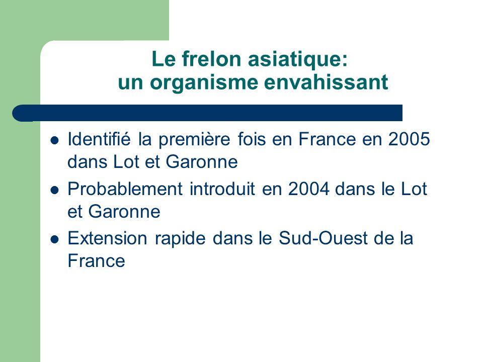 Le frelon asiatique: un organisme envahissant Identifié la première fois en France en 2005 dans Lot et Garonne Probablement introduit en 2004 dans le
