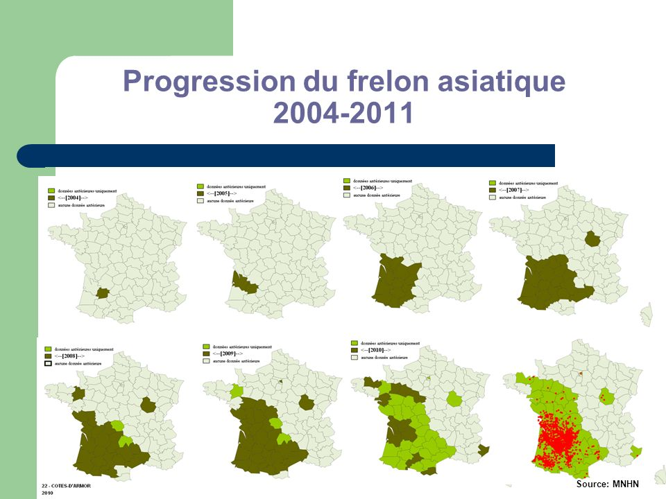Progression du frelon asiatique 2004-2011 Source: MNHN