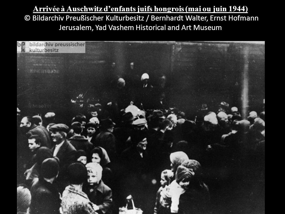 Arrivée à Auschwitz denfants juifs hongrois (mai ou juin 1944) © Bildarchiv Preußischer Kulturbesitz / Bernhardt Walter, Ernst Hofmann Jerusalem, Yad