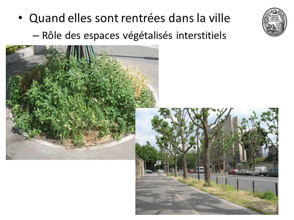 1518 juin 2010 Quand elles sont rentrées dans la ville – Rôle des espaces végétalisés interstitiels