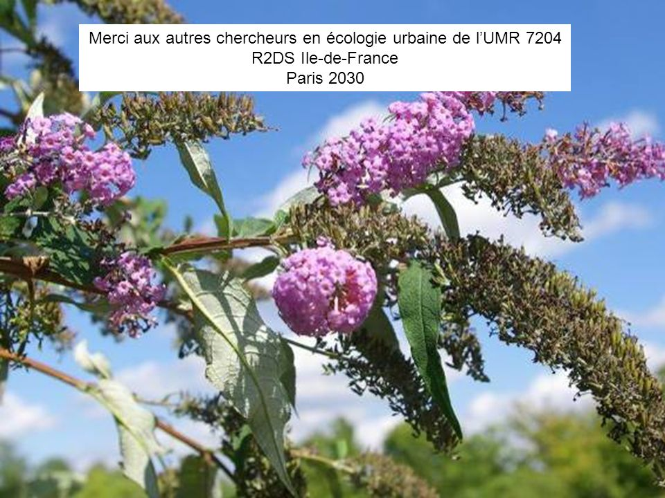 3418 juin 2010 Merci aux autres chercheurs en écologie urbaine de lUMR 7204 R2DS Ile-de-France Paris 2030